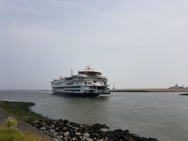 Sail 2017 Den Helder (4)