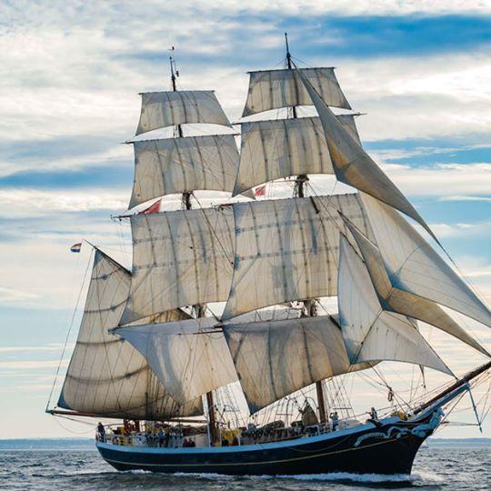 Sail 2017 foto